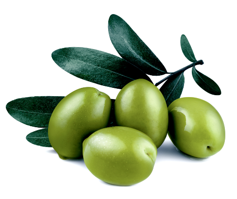 moroccan-olive